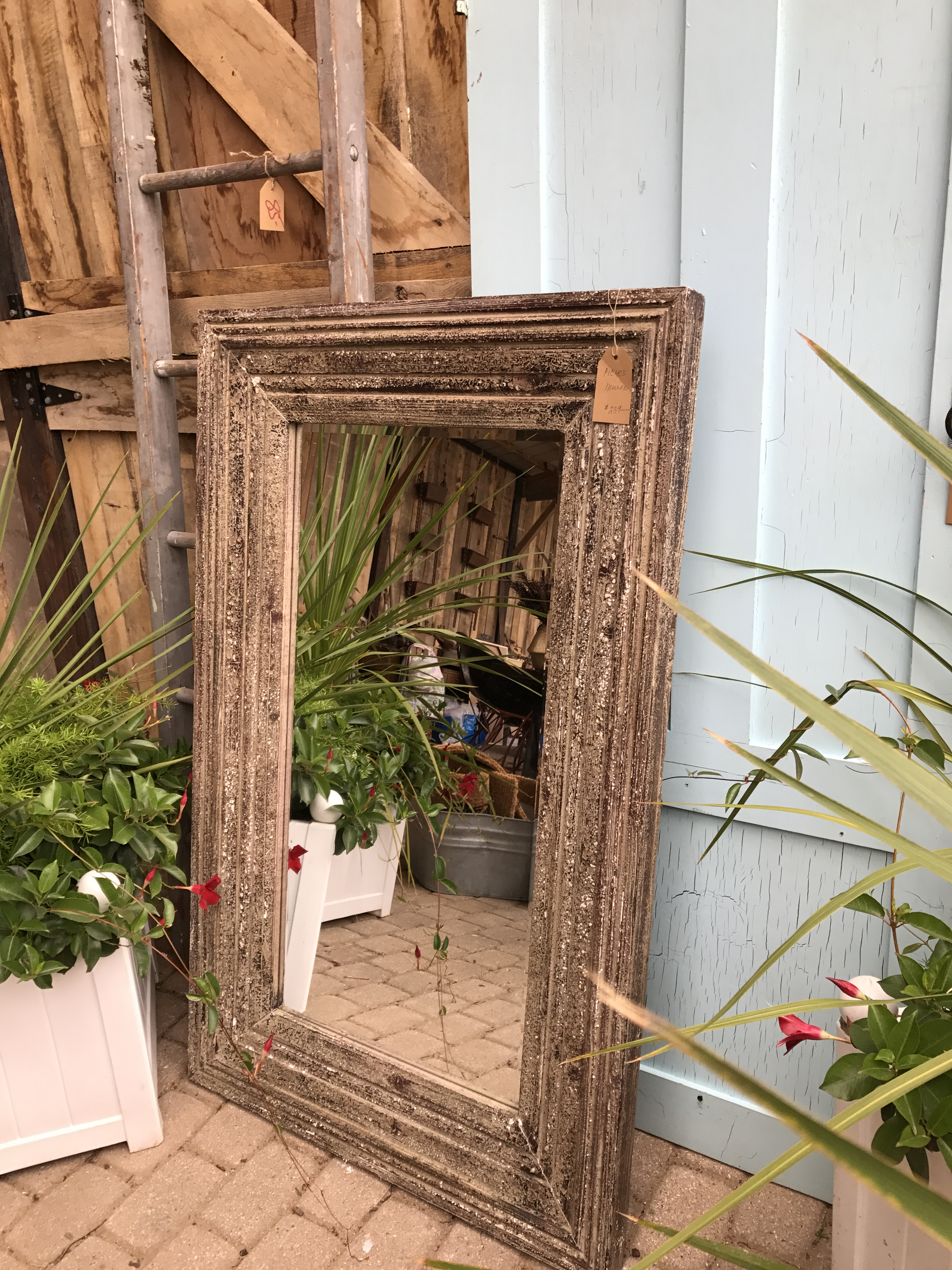 I Passed On The Cool Mirror But Bought The Blue Door.